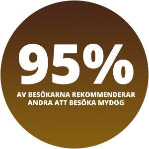 95% av alla besökare rekommenderar andra att besöka MyDOG