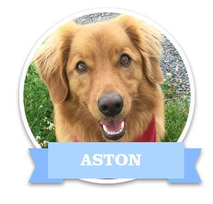 1_aston