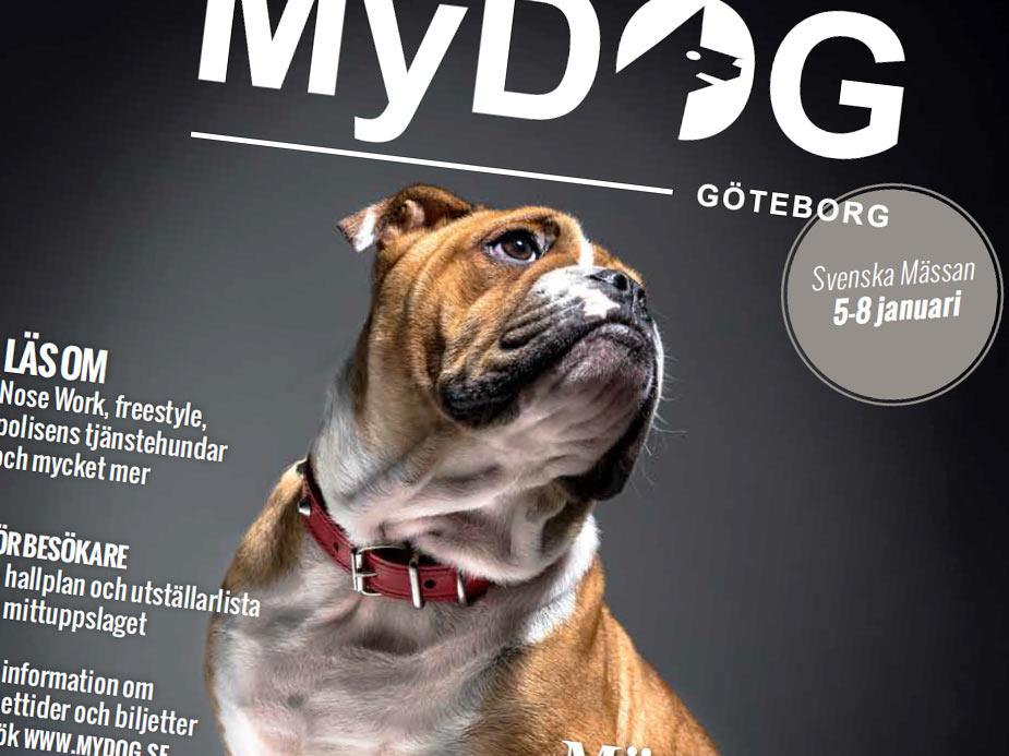 mässtidning mydog 2017